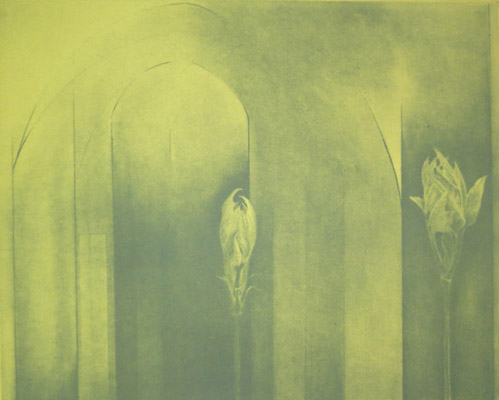 Jenny Freestone, Nigellae Damascena. 2012. Etching and Aquatint.