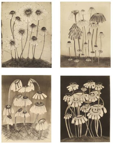 """Kiki Smith, """"Variety Flowers,"""" 2014, etching, aquatint and drypoint image size: varies about 11 1/2 x 9 inches; sheet size: 19 1/2 x 15 inches Image courtesy of Gallery Neptune & Brown"""