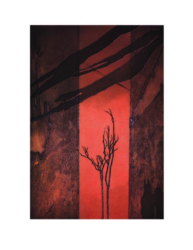 Back cover Jenny Freestone, Australian Landscape II, 2009